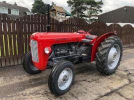 MASSEY FERGUSON 35 4 CYLINDER TRACTOR ( REFURBISHED CONDITION )